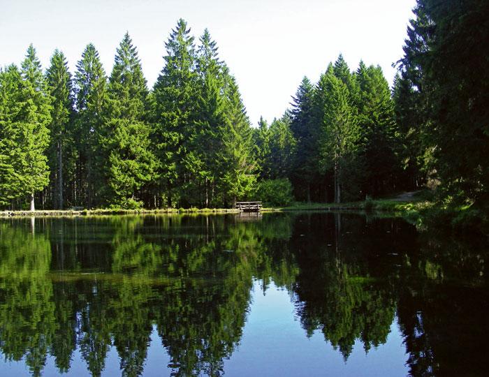 Sandsee im Nordschwarzwald