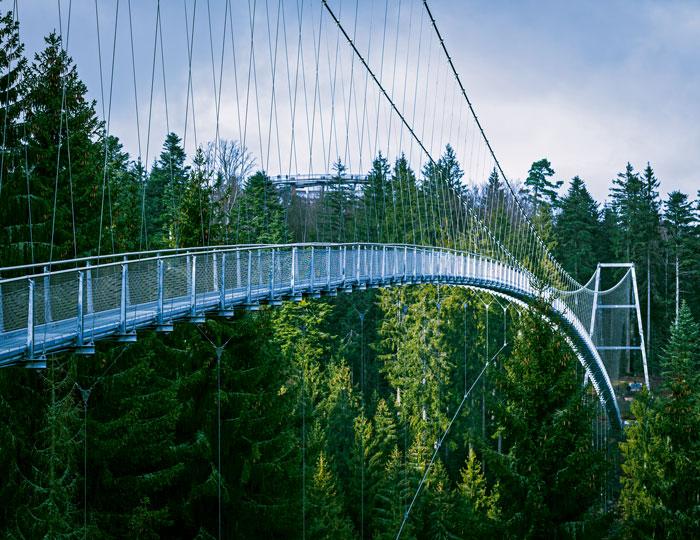 Hängebrücke Wildline, Bad Wildbad
