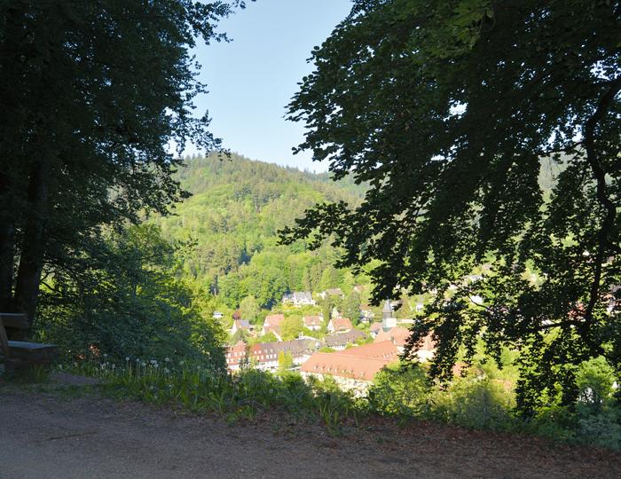 Ausblick Freiburg Günterstal