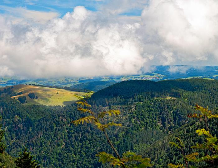 Blick zum Hinterwaldkopf