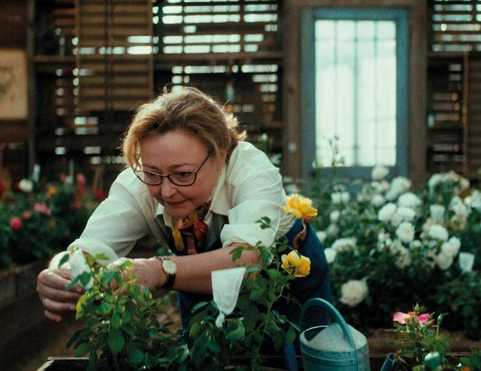 Madame Vernet bei der Rosenpflege