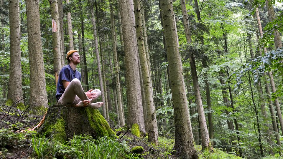Till Neumann beim Meditieren im Wald