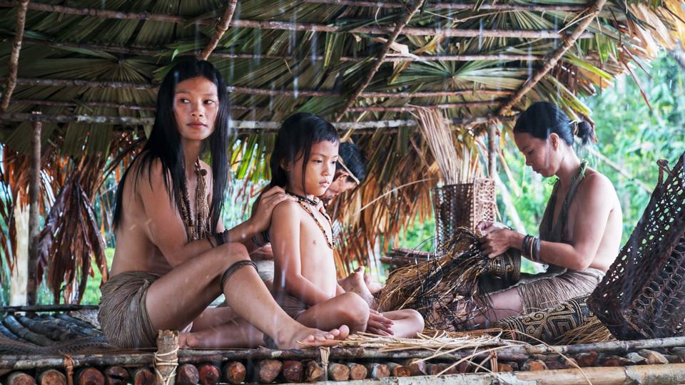 Filmausschnitt Die Stimme des Regenwalds