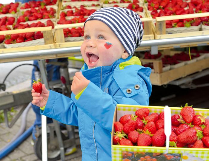Erdbeerfest und Kind mit Erdbeere in der Hand