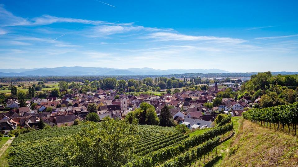 Gemeinde Bötzingen mit Weinberg