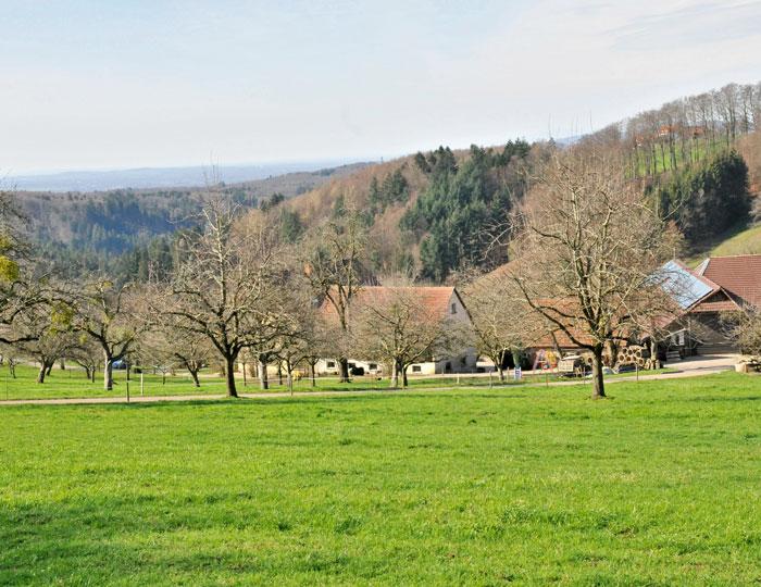 Glashüttendorf