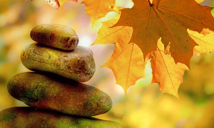 Herbstblätter und Steine