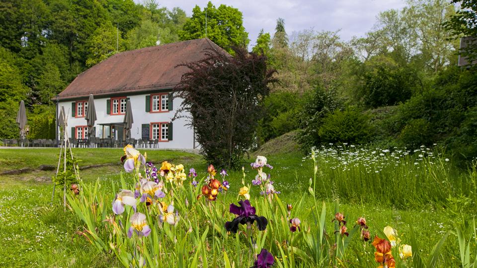 Das Gasthaus zur Lilie