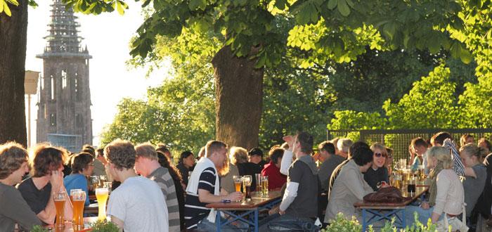 Kastaniengarten in Freiburg mit Blick auf das Münster
