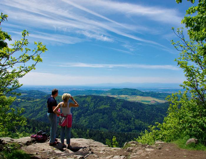 Kybfelsen mit blick ins Rheintal
