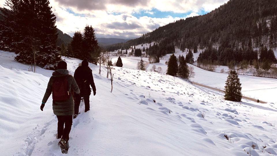 Landschaft Schnee wandern Gruppe