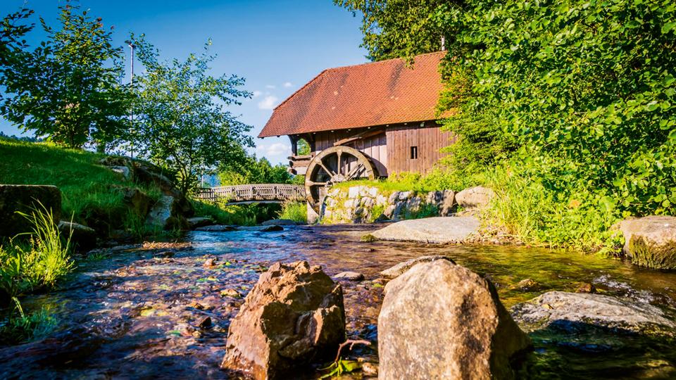 alte Mühle am Waldrand