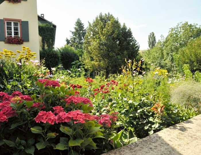 Garten Ochsen