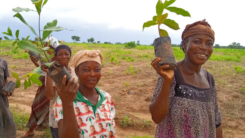 Frauen mit Baumsetzlingen in der Hand
