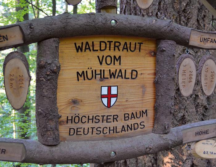 Schild Waldtraud