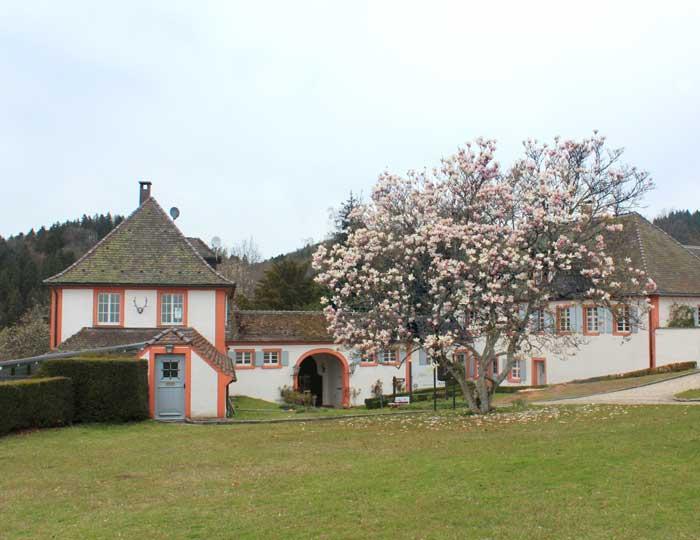Schloss-Bürgeln