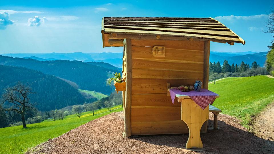 Hütte bei dem Harmersbacher Vesperweg