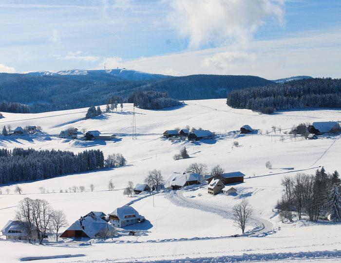 Schneelandschaft Blick auf Feldberg