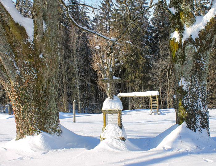 Schneelandschaft Kreuz