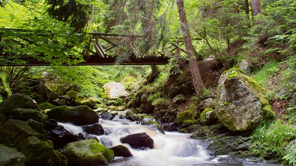 Wanderweg über Holzbrücke und Bach