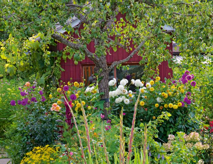 Wonnhalde – Blumengarten mit roter Gartenhütte