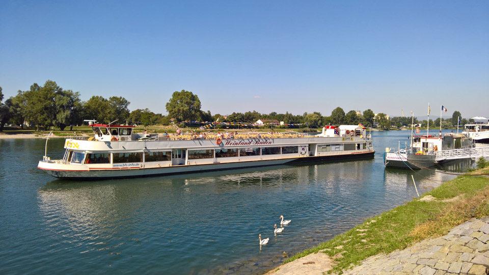 Spaziergänge Bootsfahrt Touren Sommer Erlebnisse In Breisach Am